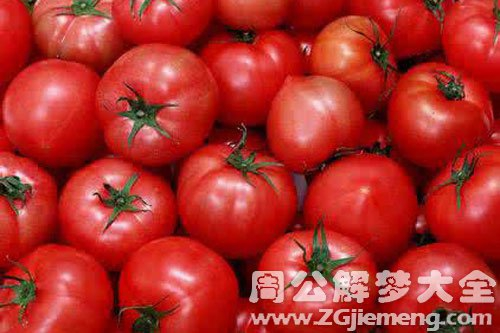 西红柿成熟了