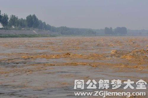 黄河水干了好多鱼