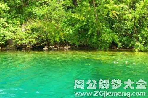 梦见湖水很绿