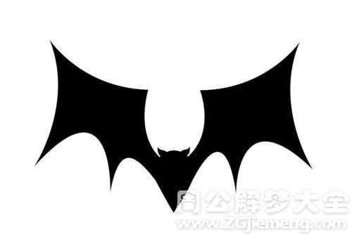 蝙蝠咬自己