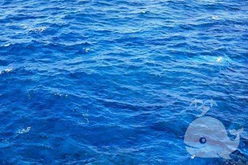 梦见水是什么意思