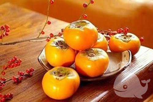 夢見摘柿子