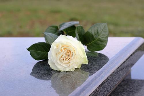 梦见爷爷奶奶坟墓被刨