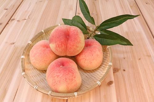 梦见满树的大桃子